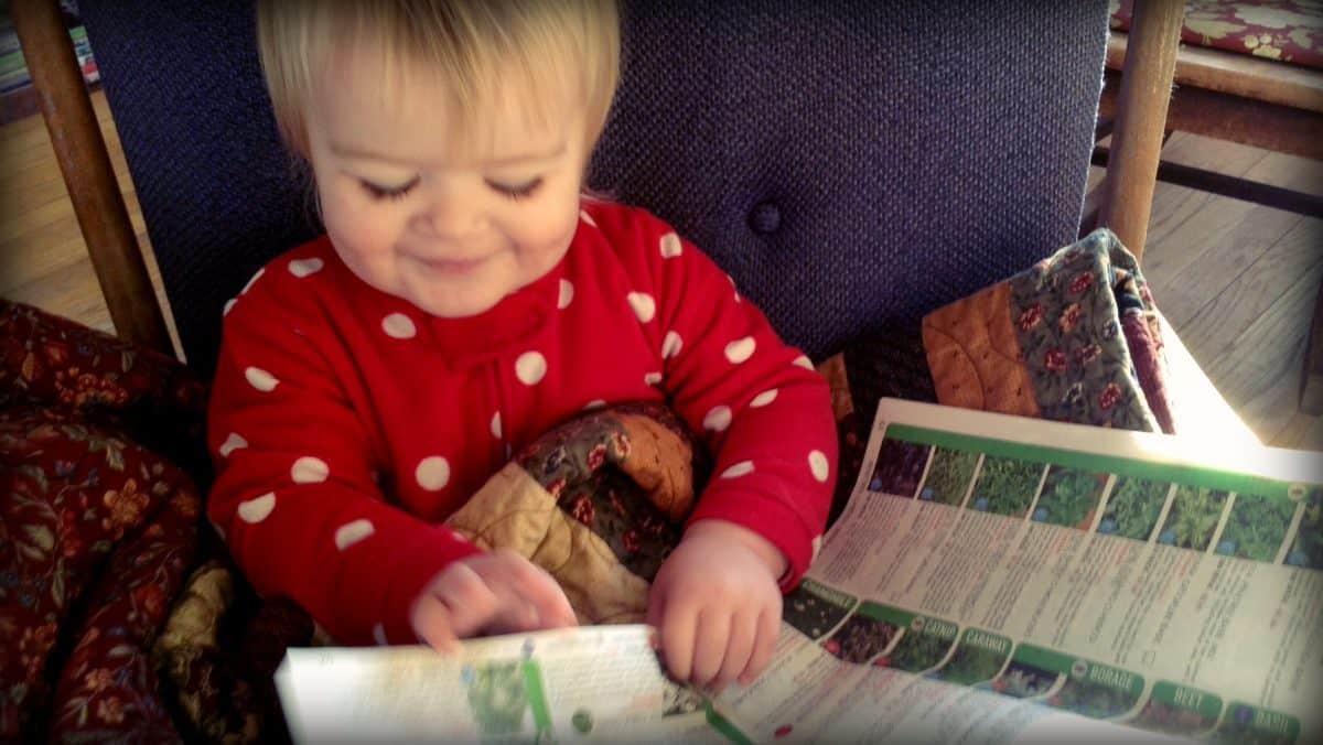 best heirloom seed catalogs