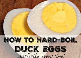 how to hard-boil duck eggs