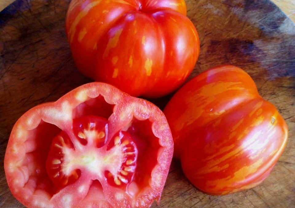 Schimmeig Striped Hollow Heirloom Tomatoes