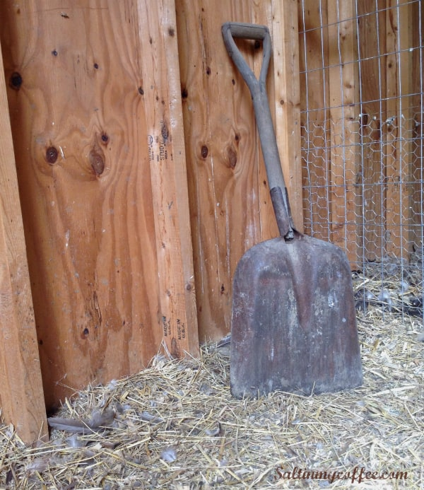 make chicken manure compost with the fast hot composting method