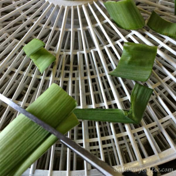 how to make your own leek powder
