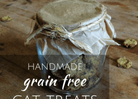 handmade grain free cat treats
