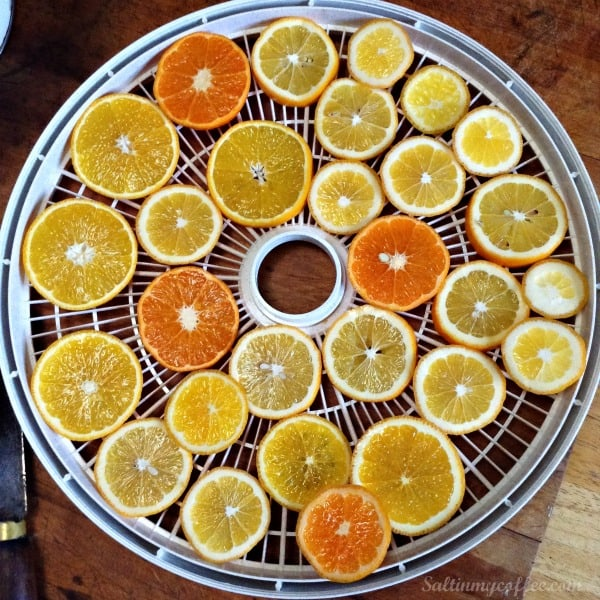 how to dehydrate citrus for garlands