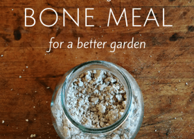 How to Make Bone Meal