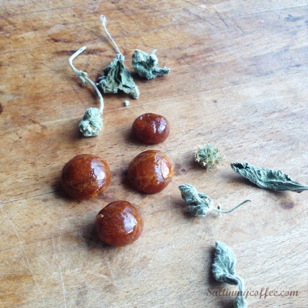 horehound cough drops with honey and grapefruit