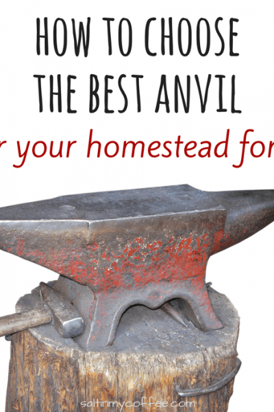 how to choose the best anvil for a homestead forge