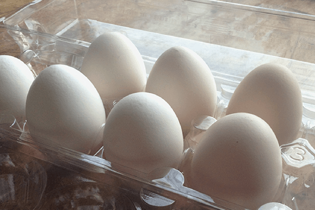 correct way to store hatching eggs