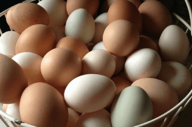 best ways to use extra eggs