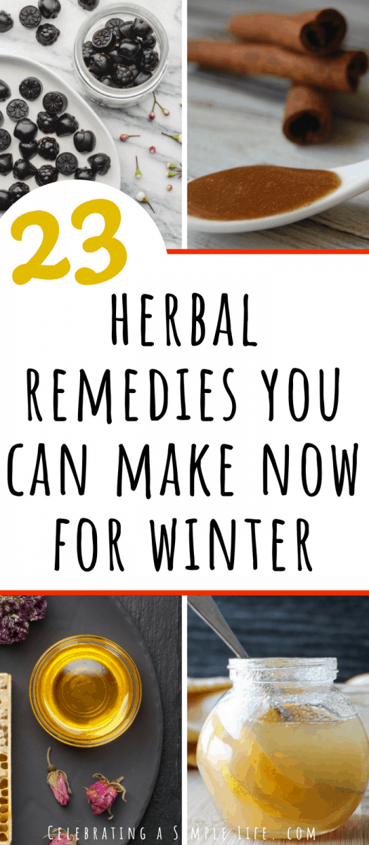 herbal remedies you can make now for winter