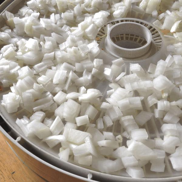 chopped onions on a dehydrator tray