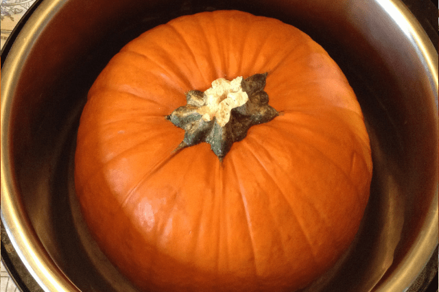 cook a whole pumpkin in an instant pot feature image