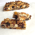 grain free dried fruit and nut bars