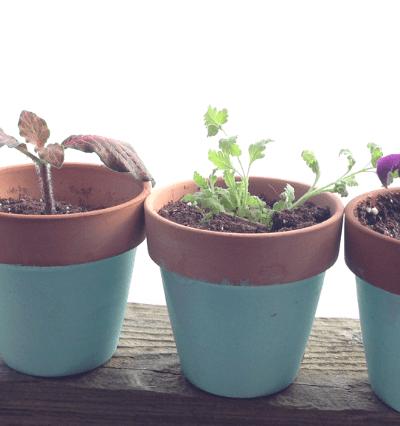 painted mini windowsill pots