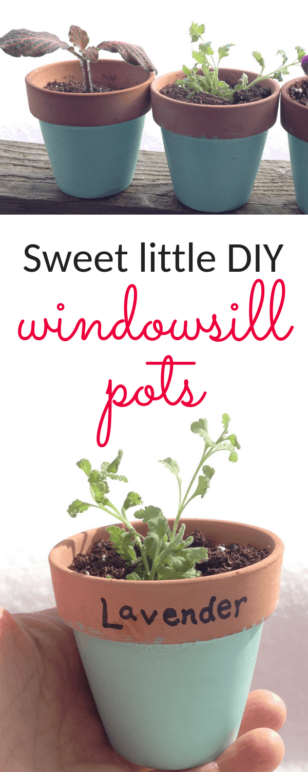These little DIY window sill pots are SO easy, and offer the sweetest splash of color in a kitchen window! #kitchengarden #gardening #gardendiy #containergardening