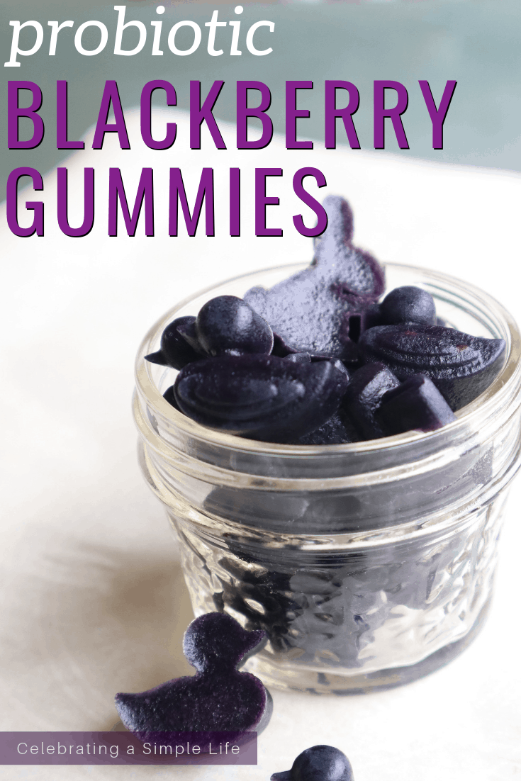 Homemade Probiotic blackberry gummies recipe