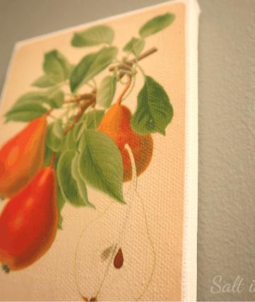 DIY vintage botanical prints on canvas