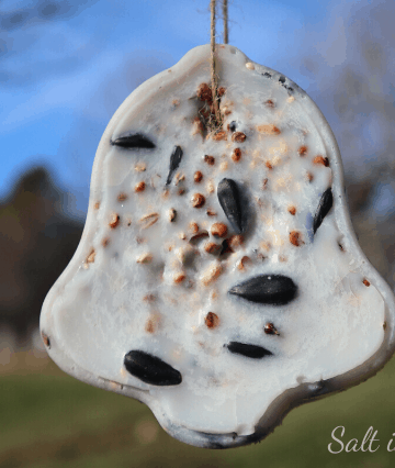 handmade suet feeder birdseed ornaments