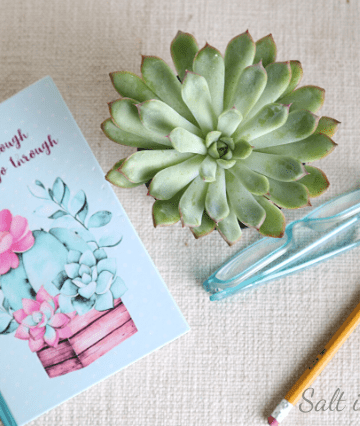 Daily planner trick for making time for self care