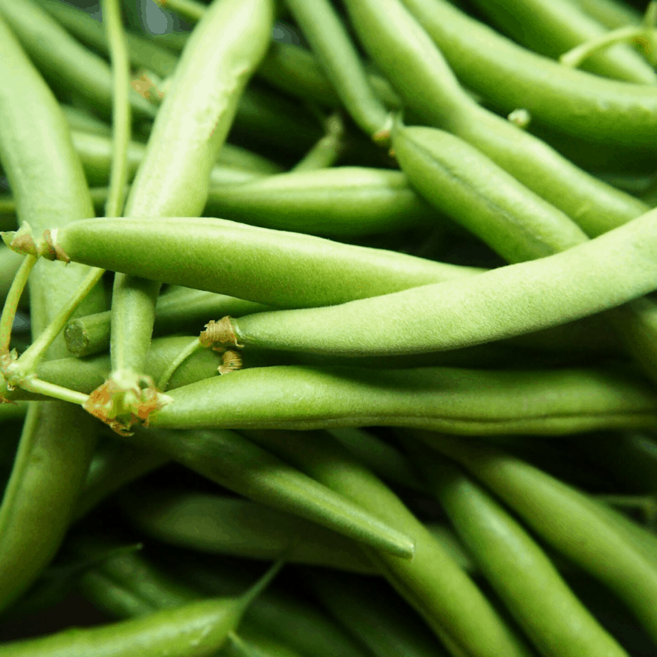 Green beans can grow in less than two months, and are a great fast growing vegetable