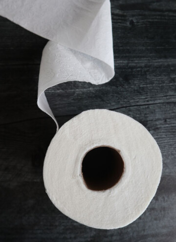 how to live without toilet paper ideas