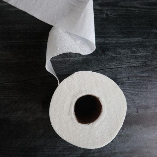 How to Live Without Toilet Paper
