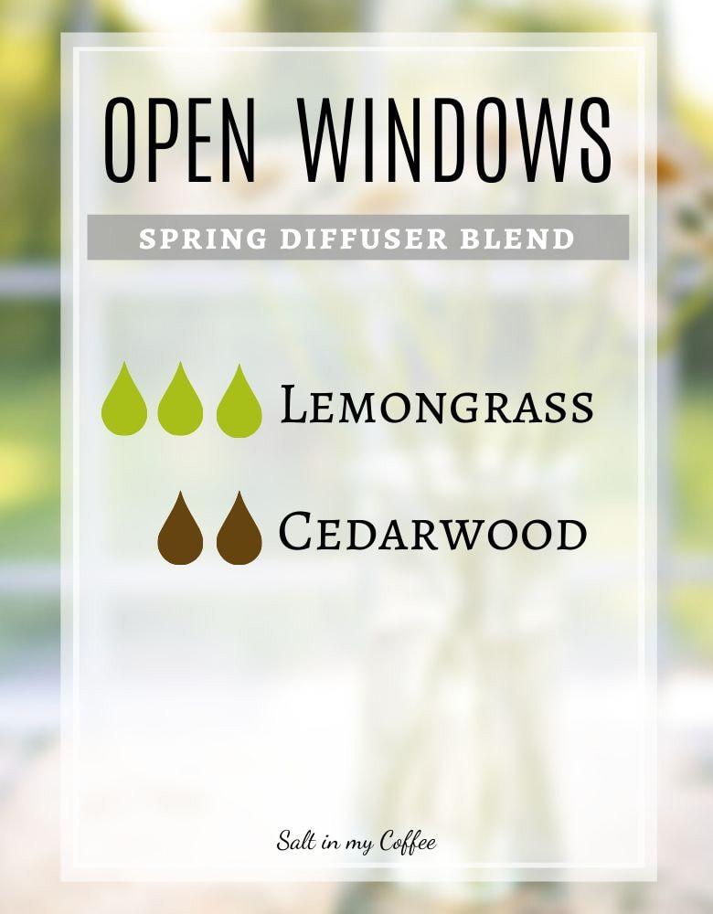 Open Windows Spring Diffuser Recipes